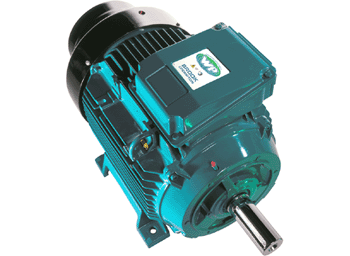 Brook crompton the w eex na non sparking range of motors covers products with outputs from 018kw to 400kw in cast iron frame sizes w df80m to w df355l in either 246 or cheapraybanclubmaster Choice Image